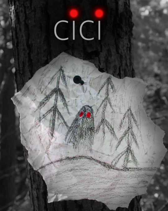 "Chicago : Male/Female, Ages 18/25 for ""Cici"" movie"